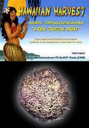 Hawaiian Harvest Herbal Smoking Blend